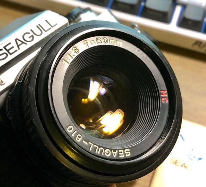 Seagull-610